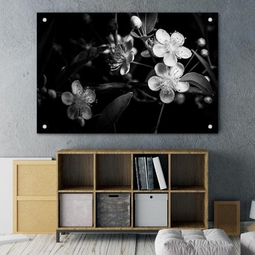 5bbe241866e18814e915754c_Glass Print-p-500